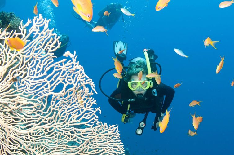 I Love Nha Trang - Diving Tour Nha Trang